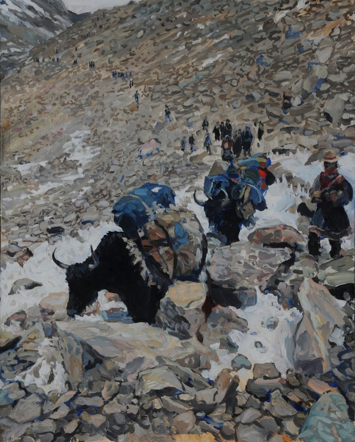 Hector McDonnell Yaks at the Dolma La Pass Tibet