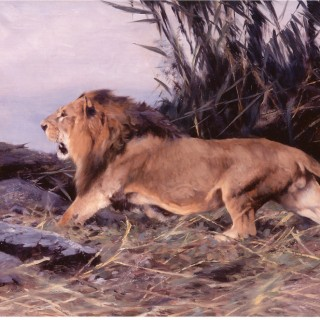 Wilhelm Kuhnert Lion in Flight