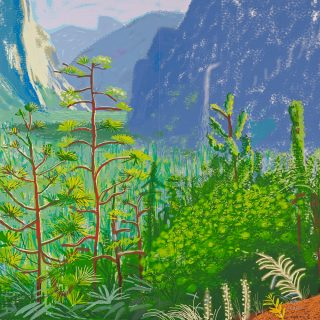 David Hockney Delahunty Fine Art